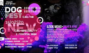 Выставки собак в Краснодаре – расписание в 2020 году.