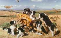 Испанские клички для собак, красивые имена для щенков мальчиков и девочек.