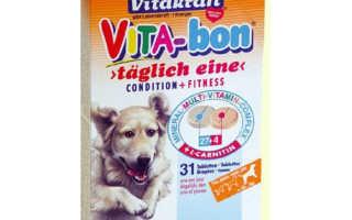 Десять важных пищевых добавок и витаминов для собак