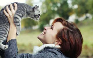 Почему кошки и коты такие милые и привлекательные?