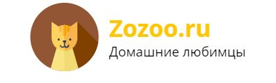 zozoo.ru
